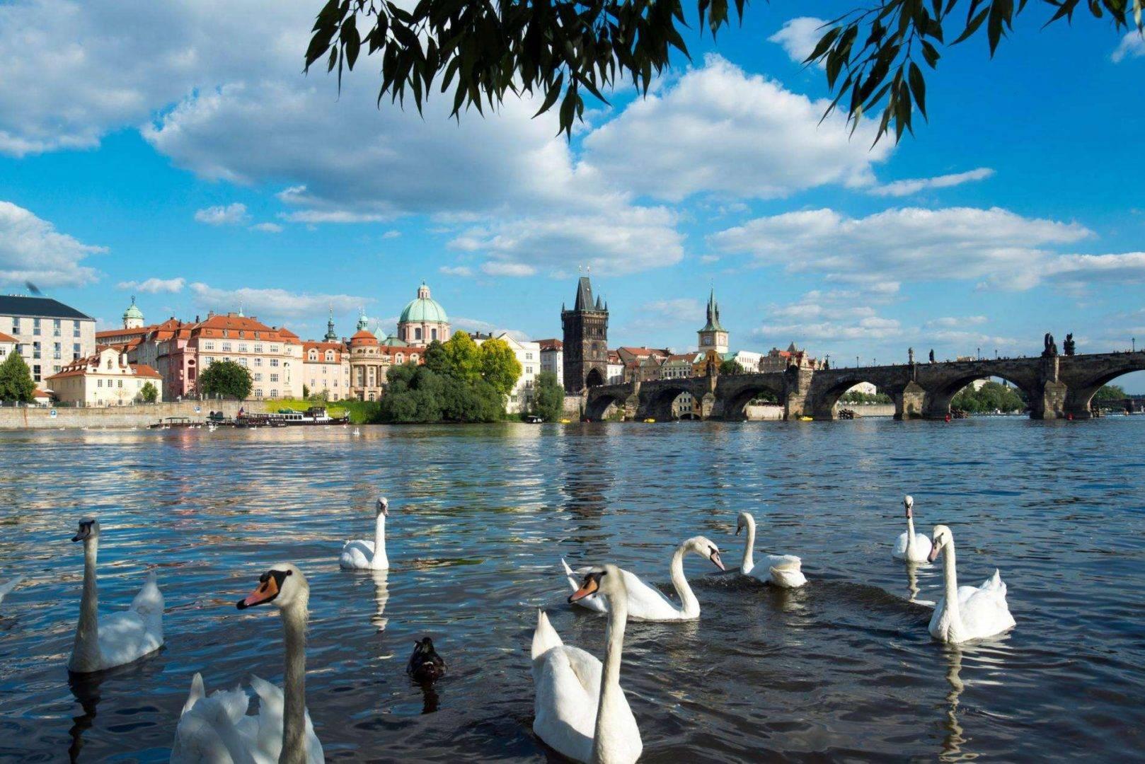 Wycieczki dla firm Czechy