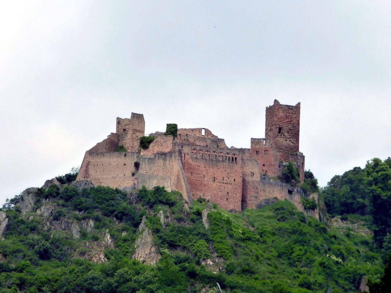Wycieczka firmowa do Alzacji