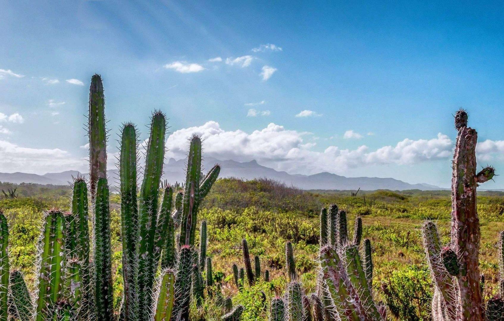 Wyjazdy incentive travel Wenezuela