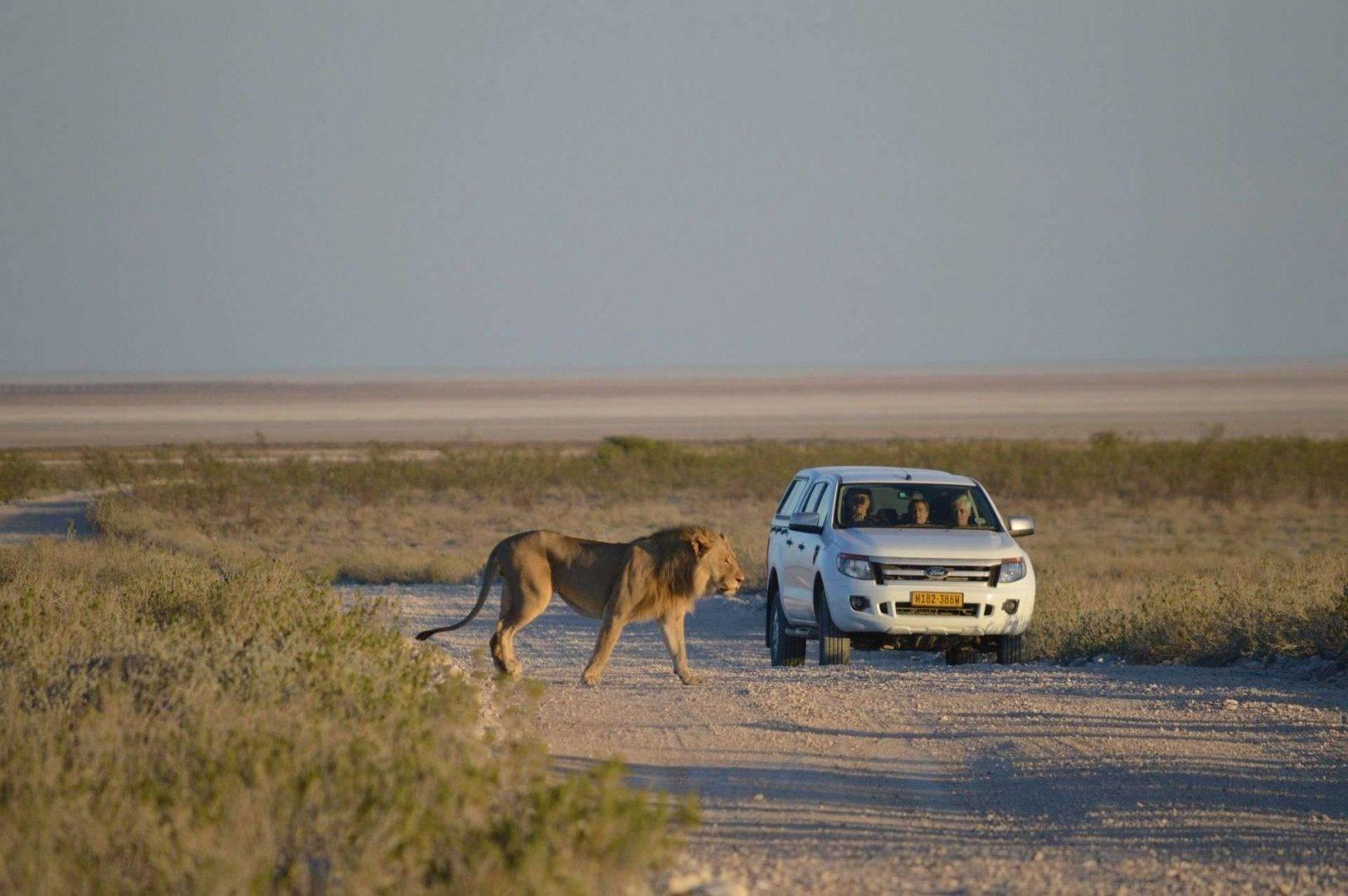 Incentive Travel do Namibii